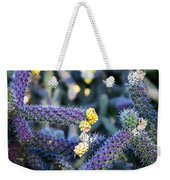 Colorful Cactus Red Purple Green Yellow Plant Fine Art Photography Print  Weekender Tote Bag