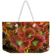 Colorful Coleus Weekender Tote Bag