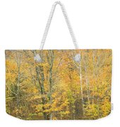 Colorful Fall Trees In Maine Weekender Tote Bag