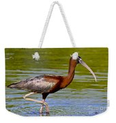Colorful Glossy Ibis Weekender Tote Bag