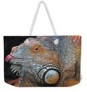colorful Iguana Weekender Tote Bag