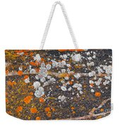 Colorful Moss Spots On A Gneiss Rock Weekender Tote Bag