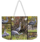 Colorful Sandhill Crane Collage Weekender Tote Bag