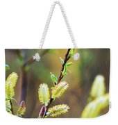 Spring Pussy Willows Weekender Tote Bag