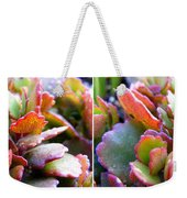 Colorful Succulents In Stereo Weekender Tote Bag