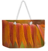 Colorful Sumac Foliage In Fall Weekender Tote Bag