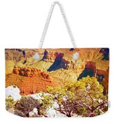 Colours Within The Canyon Weekender Tote Bag by Tara Turner