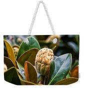 columnar Southern magnolia Weekender Tote Bag