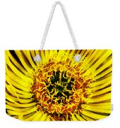 Come A Little Closer  Weekender Tote Bag