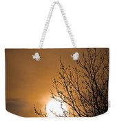 Coming Home In The Spring Weekender Tote Bag by Bob Orsillo