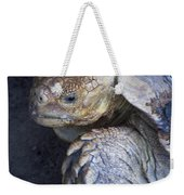 Coming Out Of Shell Weekender Tote Bag