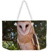 Common Barn Owl 1 Weekender Tote Bag