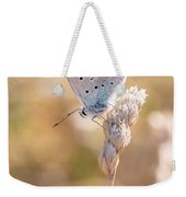 Common Blue Butterfly Weekender Tote Bag