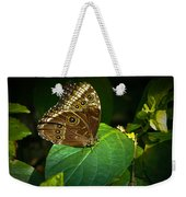 Common Blue Morpho Moth Weekender Tote Bag