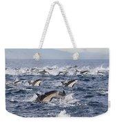 Common Dolphins Surfacing San Diego Weekender Tote Bag by Richard Herrmann