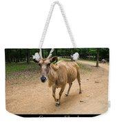 Common Eland Weekender Tote Bag by Chris Flees