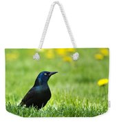Common Grackle Weekender Tote Bag by Christina Rollo