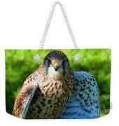 Common Kestrel  Weekender Tote Bag