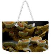 Common Orange Lichen Weekender Tote Bag