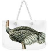 Common Ostrich Weekender Tote Bag