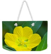 Common Primrose Willow 1 Weekender Tote Bag