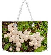 Common Puffball Mushrooms Lycoperdon Perlatum Weekender Tote Bag