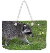 Common Raccoon Weekender Tote Bag