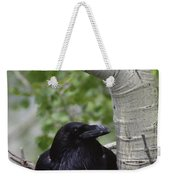 Common Raven Incubating Eggs In Nest Weekender Tote Bag