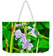 Common Speedwell On Skyline Trail In Cape Breton Highlands National Park-nova Scotia  Weekender Tote Bag