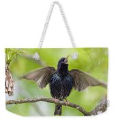 Common Starling Singing Bavaria Weekender Tote Bag