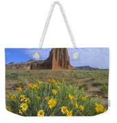 Common Sunflowers And  Temple Of The Sun Weekender Tote Bag by Tim Fitzharris