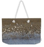 Common Teal Anas Crecca Weekender Tote Bag