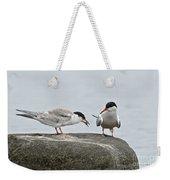 Common Tern Pictures 39 Weekender Tote Bag
