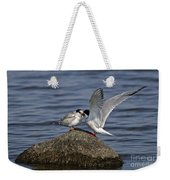 Common Tern Pictures 48 Weekender Tote Bag