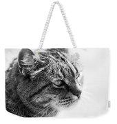 Concentrating Cat Weekender Tote Bag