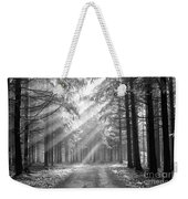Coniferous Forest In Early Morning Weekender Tote Bag