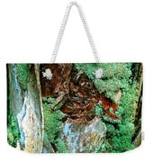 Conquistador Of The Palm Weekender Tote Bag