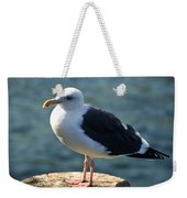 Contemplating Life Of A Sea Gull Weekender Tote Bag