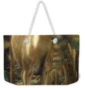Mule Deer - Contemplation Weekender Tote Bag