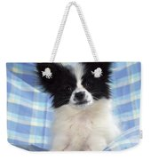 Continetal Toy Spaniel Or Papillon Dog Weekender Tote Bag