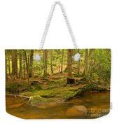 Cook Forest Rocks And Roots Weekender Tote Bag