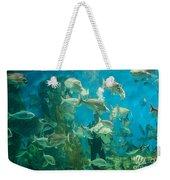 Cool Aquarium Weekender Tote Bag by Ray Warren