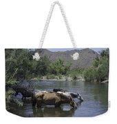 Cooling Off Weekender Tote Bag