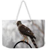 Coopers Hawk Weekender Tote Bag