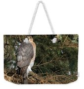 Coopers Hawk In Predator Mode Weekender Tote Bag