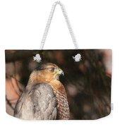 Coopers Hawk In Profile Weekender Tote Bag