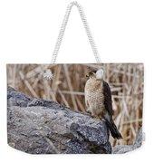 Coopers Hawk Pictures 91 Weekender Tote Bag
