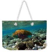 Coral Cruiser Weekender Tote Bag