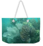 Coral Fans Weekender Tote Bag by Adam Jewell