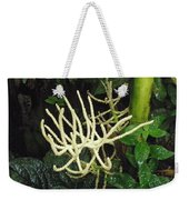 White Palm Flower In Costa Rica Weekender Tote Bag